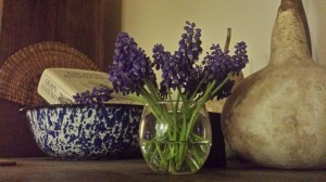 BohoFarmsBlogpost photo gourds hyacinth bluewhite enamel