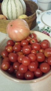 Orange beefsteak heirloom tomato with heirloom cherry tomato